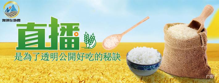 彰化縣埤頭鄉:天然乾淨的水質是稻米好吃的必要條件
